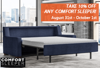 American Leather Comfort Sleeper