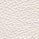 Bari White